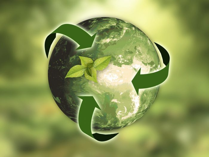 10 ways to offset carbon footprint