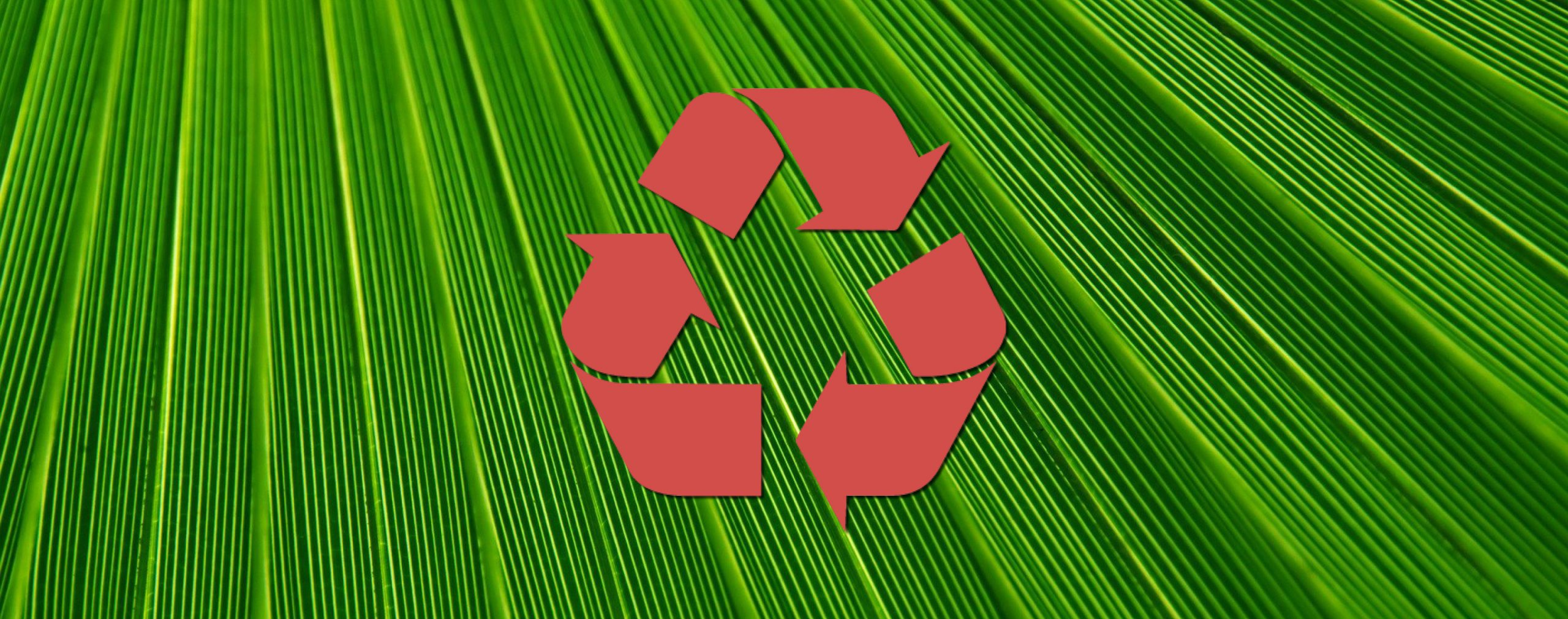 3 Ways to help in-store staff to recycle retail point of sale displays